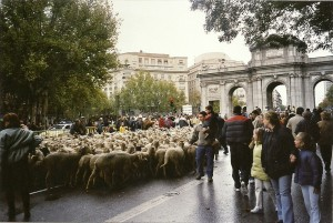 ex-Madrid